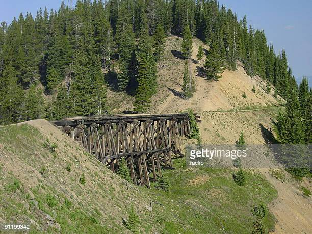Tren puente sobre caballetes a comienzos del 1900.