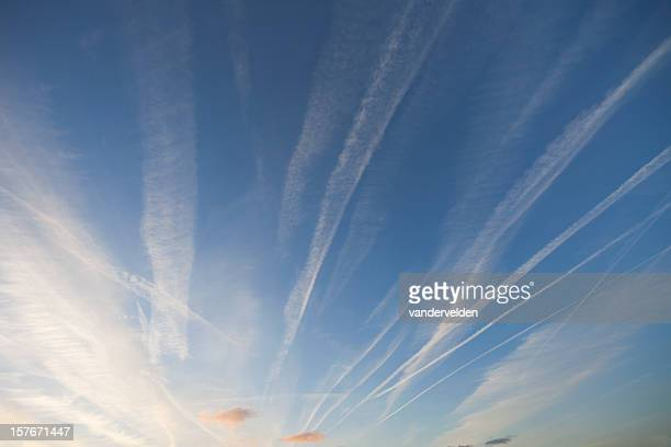 Early Evening Vapour Trails