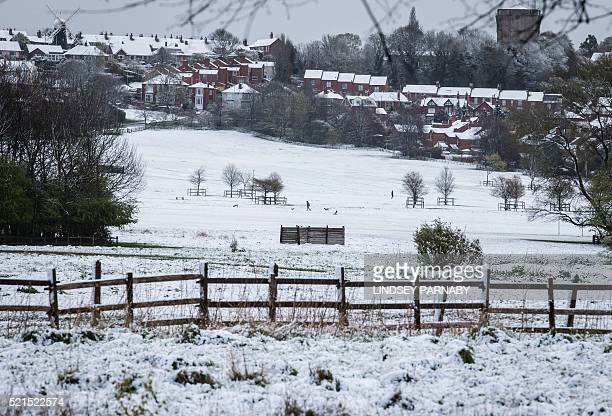 Early morning dog walkers brave the cold conditions in Lincoln after an overnight covering of snow in Lincolnshire east England on April 16 2016 /...