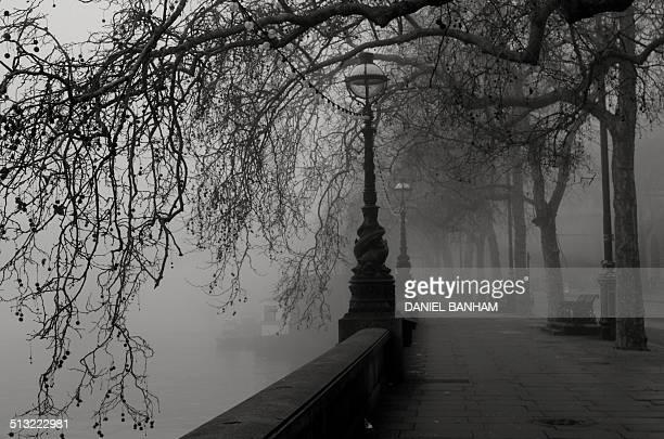 Early morning fog - London Thames Embankment