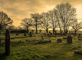 Early morning in a graveyard