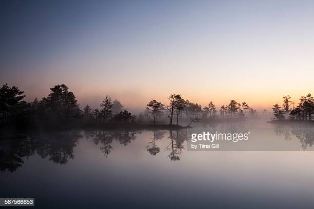 Early morning landscape with fog on the lake