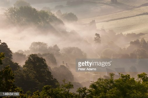 Early Morning Mist, Gloucestershire, Engl