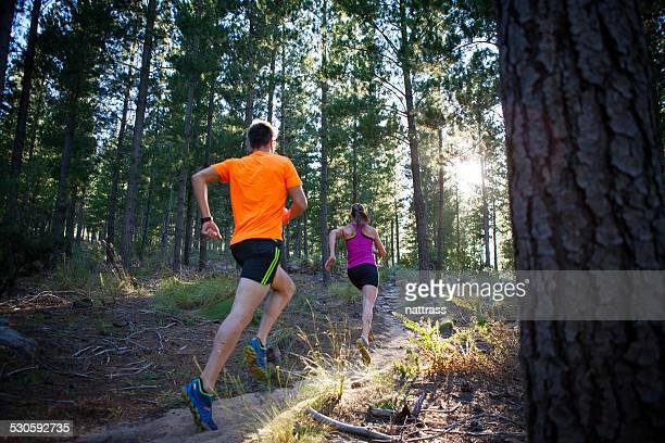 Courez tôt le matin dans la forêt.