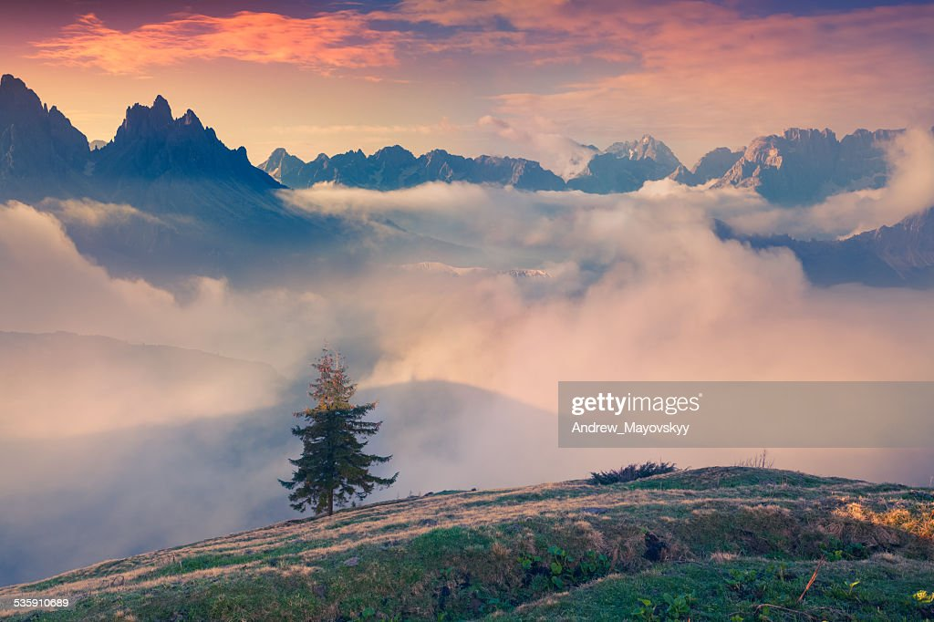 Early spring in the mountains : Stock Photo