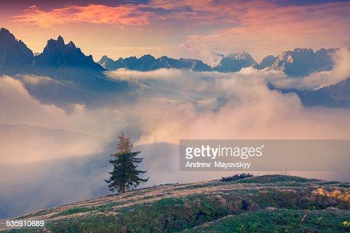 Início da Primavera nas montanhas : Foto de stock