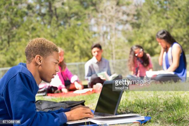 Early teenage boy studying in park with friends.