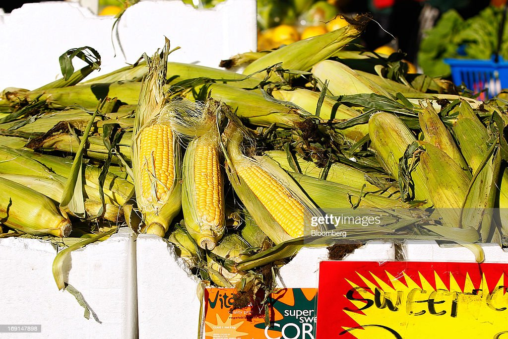 Ears of corn are displayed for sale at a stall at the Frenchs Forest Organic Food Market in Sydney, Australia, on Sunday, May 19, 2013. The Reserve Bank of Australia cut its benchmark interest rate to a record low this month to boost businesses weakened by the currency's sustained strength, even as households reacted to earlier reductions. Photographer: Brendon Thorne/Bloomberg via Getty Images