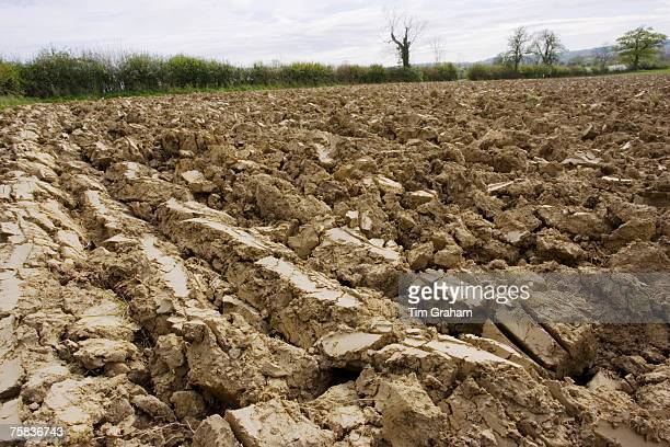 Earth of ploughed field Wyck Rissington Gloucestershire United Kingdom