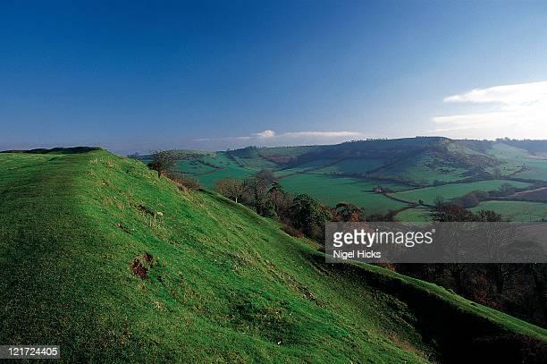 Earth ramparts of Cadbury Castle.