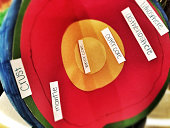 Earth's inner layers science project