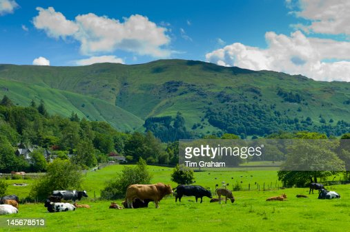 Easedale, The Lake District, UK : Stock Photo