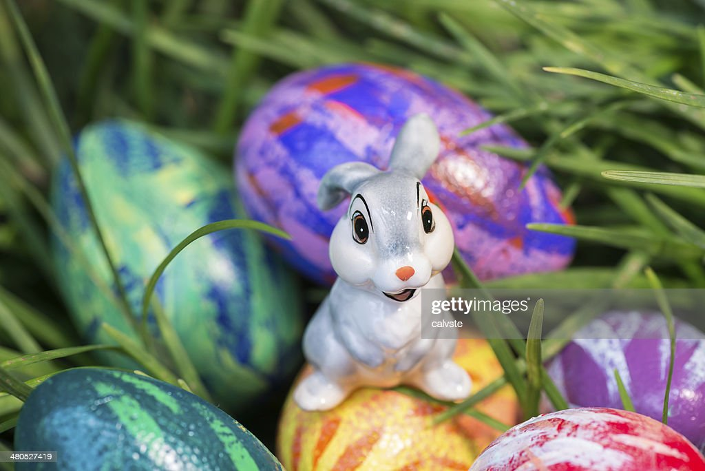 Easter bunny on an egg close-up : Stock Photo