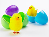 Easter Chicks Hatching Out Of Eggs