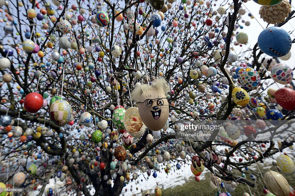 Easter eggs hang in the apple tree, which pensioners Volker and Christa Kraft have decorated with 10.000 Easter eggs on March 24, 2013 in Saalfeld, Germany. The family started decorating an apple tree with painted hen's eggs in their garden in 1965 as amusement for child and grandchildren, now it is an attraction that draws thousands of visitors and tourists to the garden of the family.