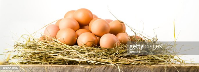 Easter eggs in nest on rustic wooden planks. White background : Stock Photo