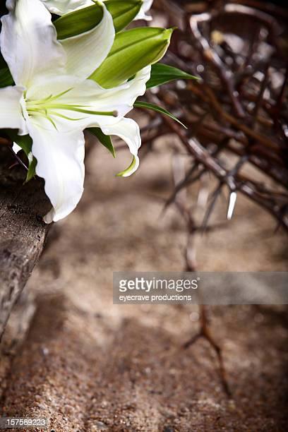 復活祭祝日の情熱リリー