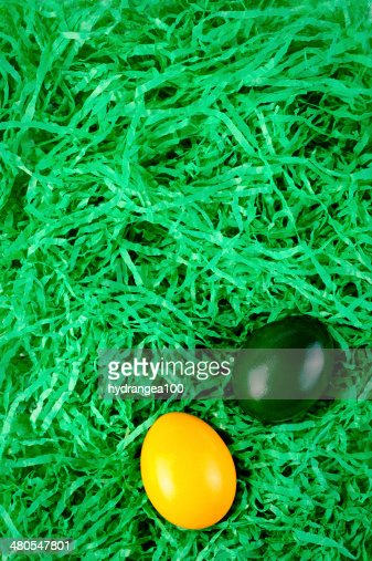 Easter nest : Stock Photo