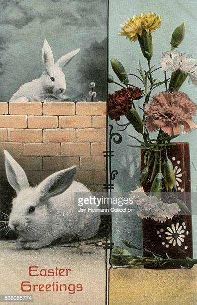 Easter postcard featuring two white rabbits near a brick wall and vase of flowers