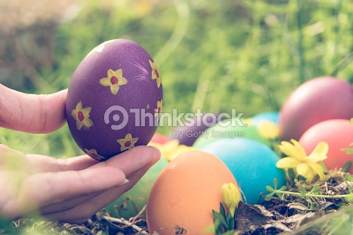 Easter sunday, happy easter, colorful easter eggs hunt holiday decorations easter concept backgrounds with copy space - gain & noise filter apply
