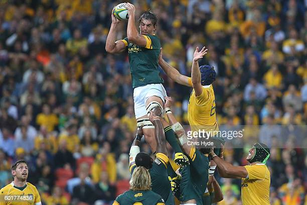 Eben Etzebeth of the Springboks takes the lineout during the Rugby Championship match between the Australian Wallabies and the South Africa...