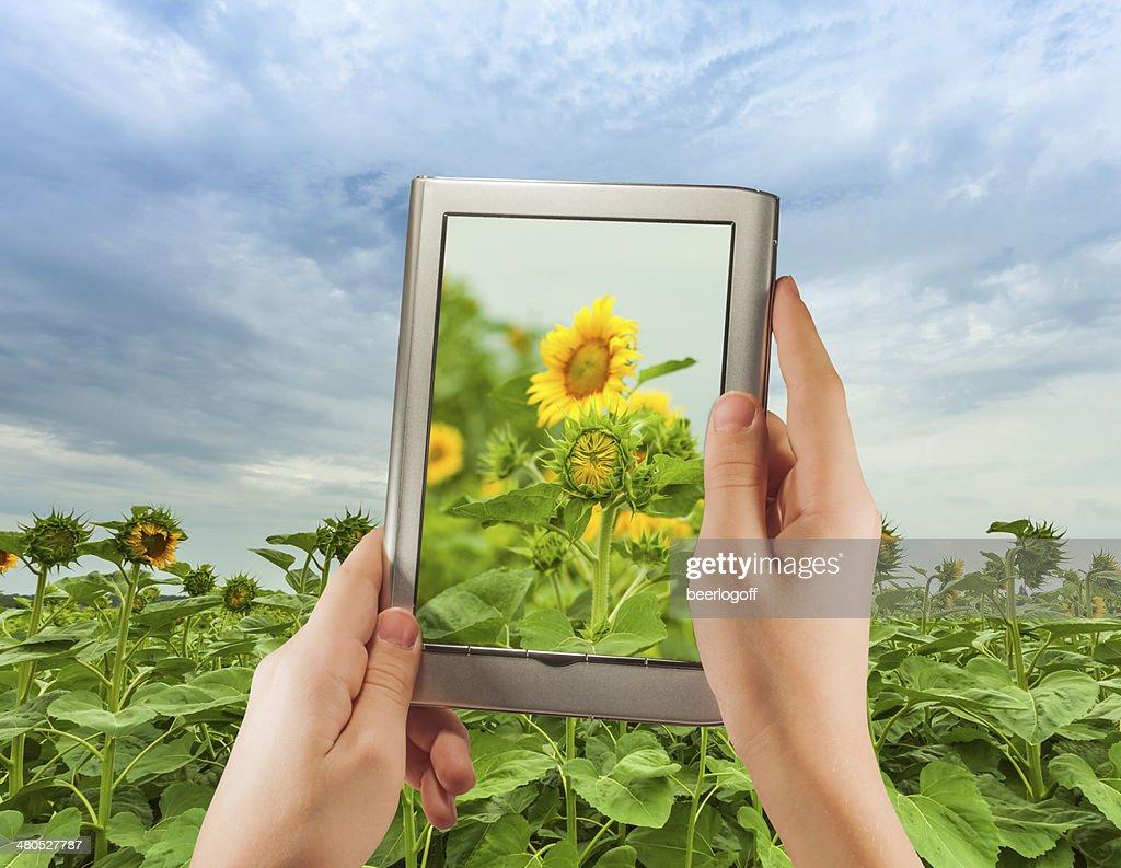 eBook on a small digital tablet : Stockfoto