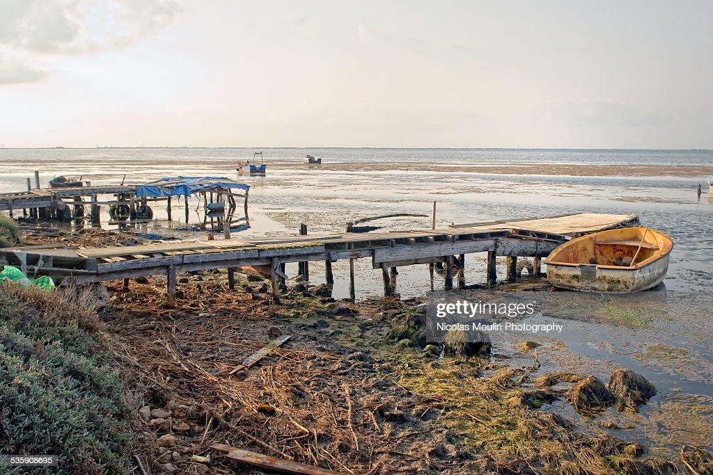 Ebro Delta : Stock-Foto