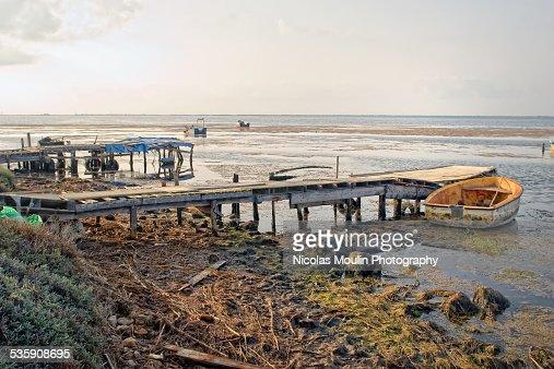 Ebro Delta : Foto de stock