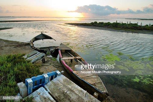 Ebro Delta : Stock Photo