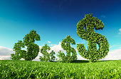 Eco friendly business, green profit, growing money and  sustainable economy concept. 3d rendering of green dollar icon on fresh spring meadow with blue sky in background.