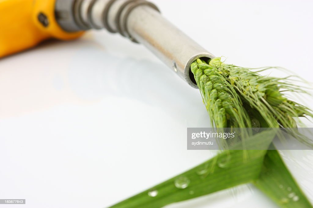 Eco fuel concept with wheat coming out of a gas pump