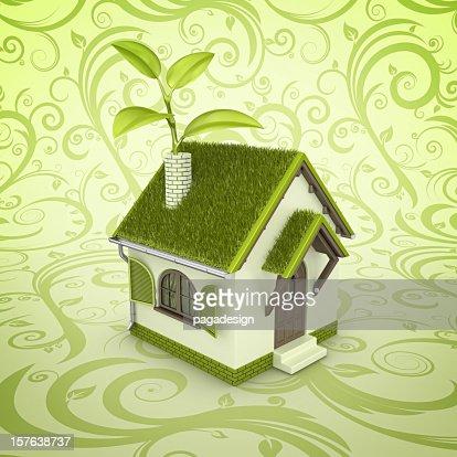 eco house : Stock Photo