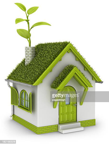 eco house with plant in chimney