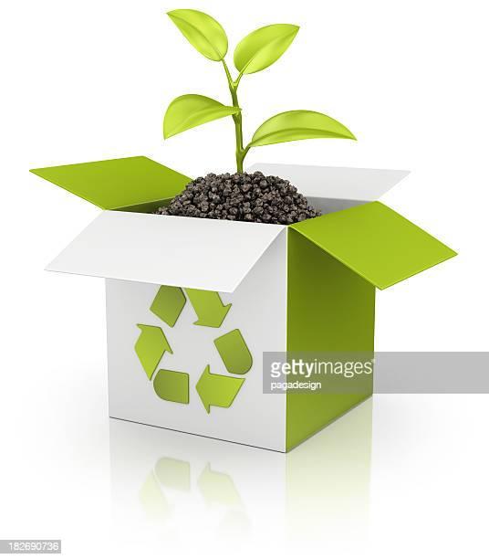 eco recycling box