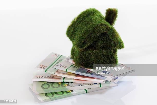 Eco-house on bundles of euro notes, close up