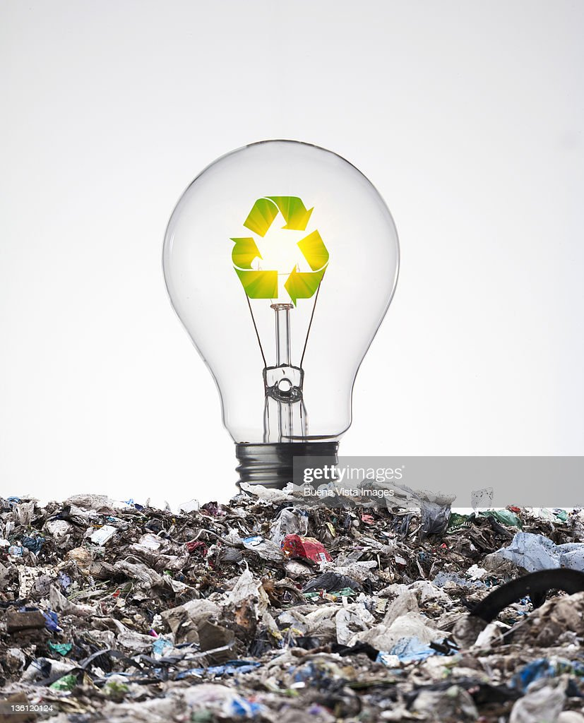 ecologic bulb : Stock Photo