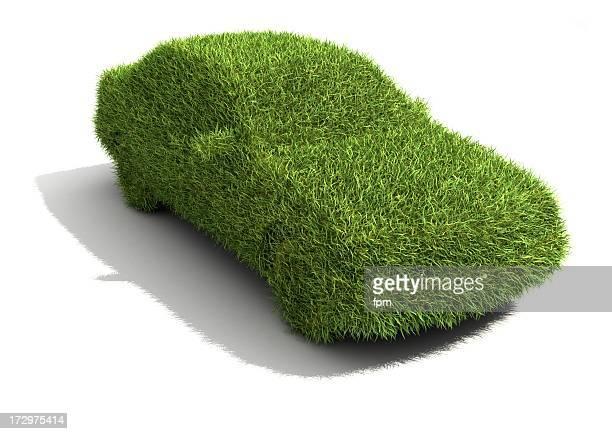 Ecologic Car