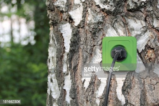 Ecological concept : Stock Photo