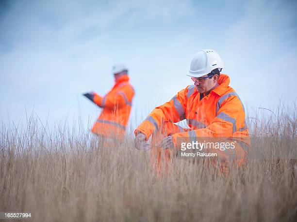 Ecologists at surface coal mine restoration inspecting grasses