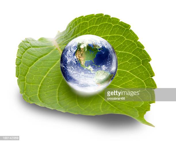 Ökologie-Konzept: Welt Globus auf green leaf