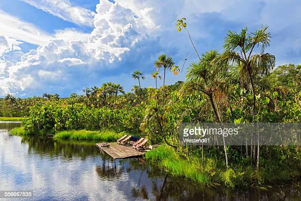 Ecuador, Amazon River region, swimming area at Lake Pilchicocha