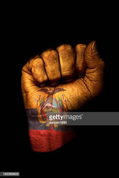 Bandera ecuatoriana puño