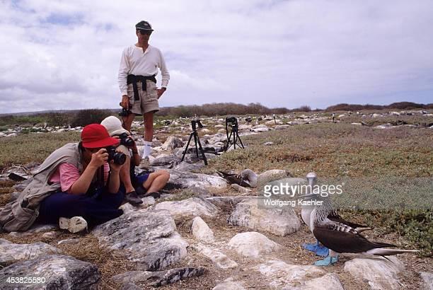 Ecuador Galapagos Islands Hood Island Bluefooted Boobies Tourists Photographing