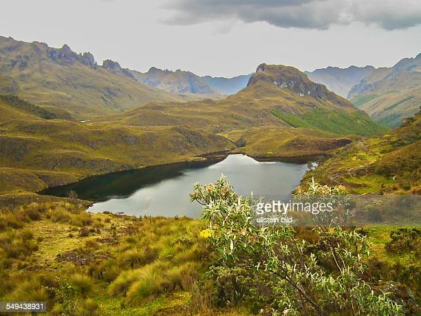 Little mountain lake in El Cajas National Park