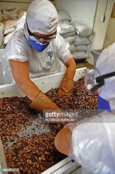 Chocolate Factory Quito Ecuador