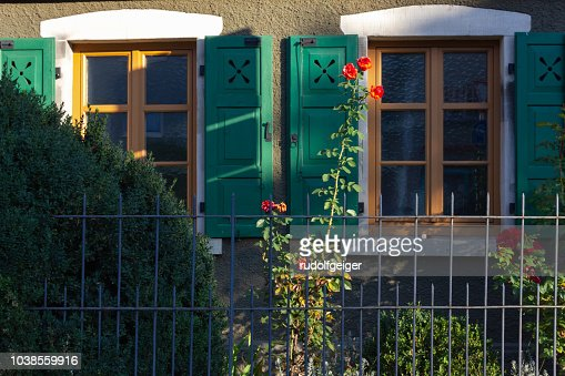 ed roses on framework facade with window green shutters : Foto stock