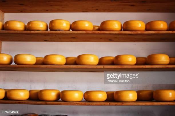 Edam cheeses on shelves