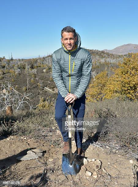 Eddie Bauer and philanthropic ambassador Ryan Reynolds plant 50 millionth tree in celebration of 20Year partnership with American Forests on November...