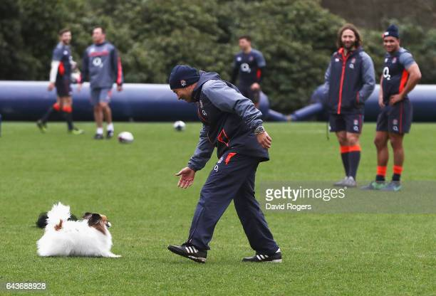 Eddie Jones head coach of England plays with his dog during an England training session at Pennyhill Park on February 22 2017 in Bagshot England
