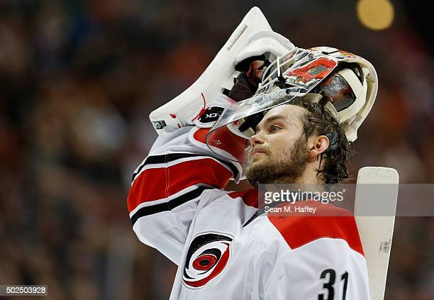Eddie Lack of the Carolina Hurricanes looks on during a game against the Anaheim Ducks at Honda Center on December 11 2015 in Anaheim California